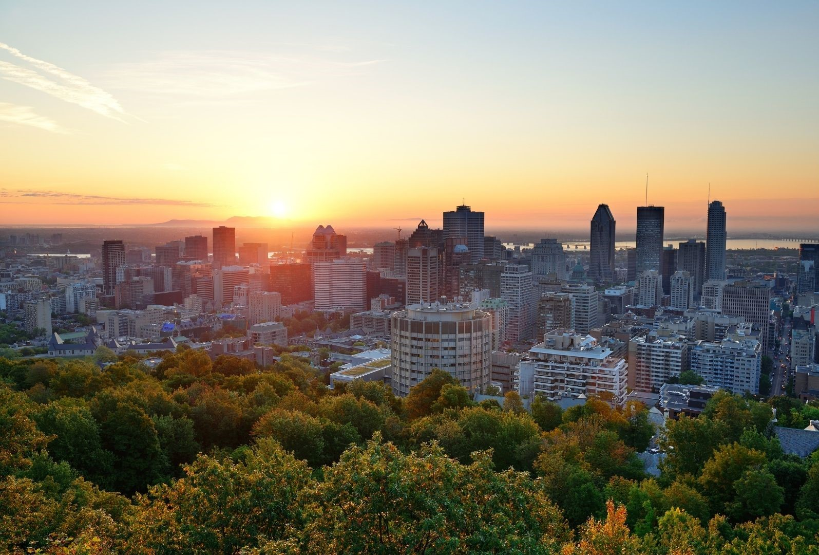 Montreal immobilier